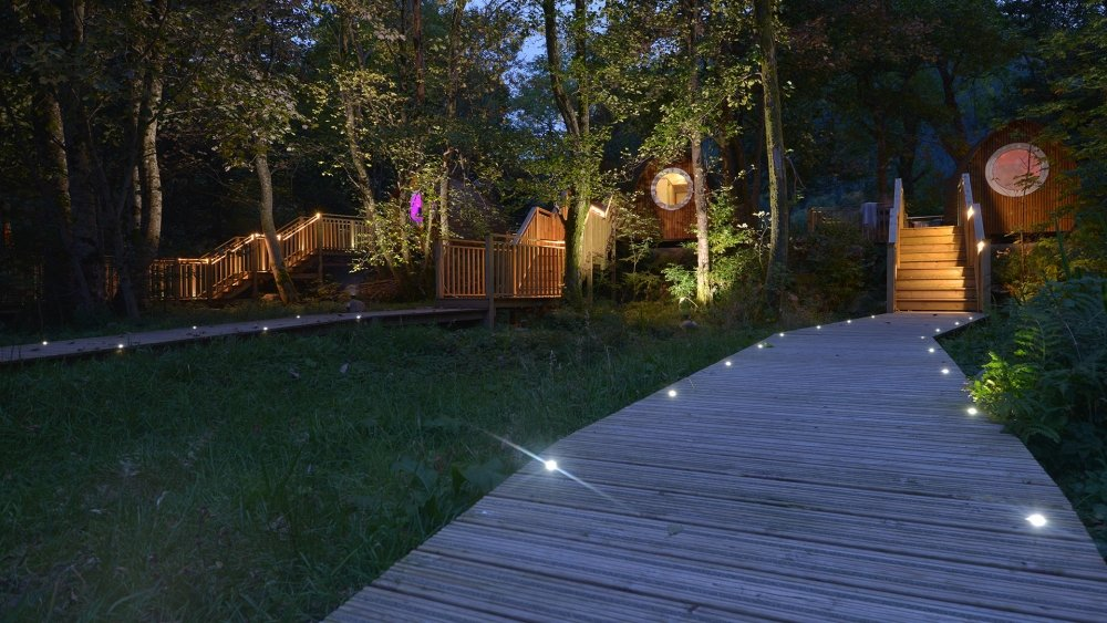 Luxury Lodges with their own private walkways through our woodland setting