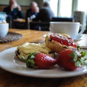 Tea scones and cream